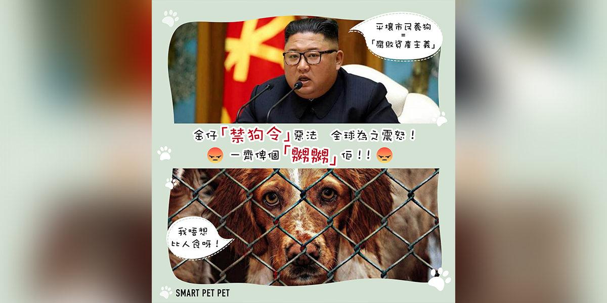 6 Aug_Kim