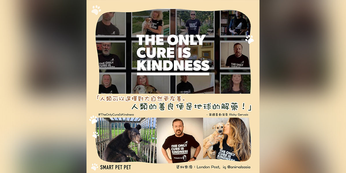 the_cure_is_kindness