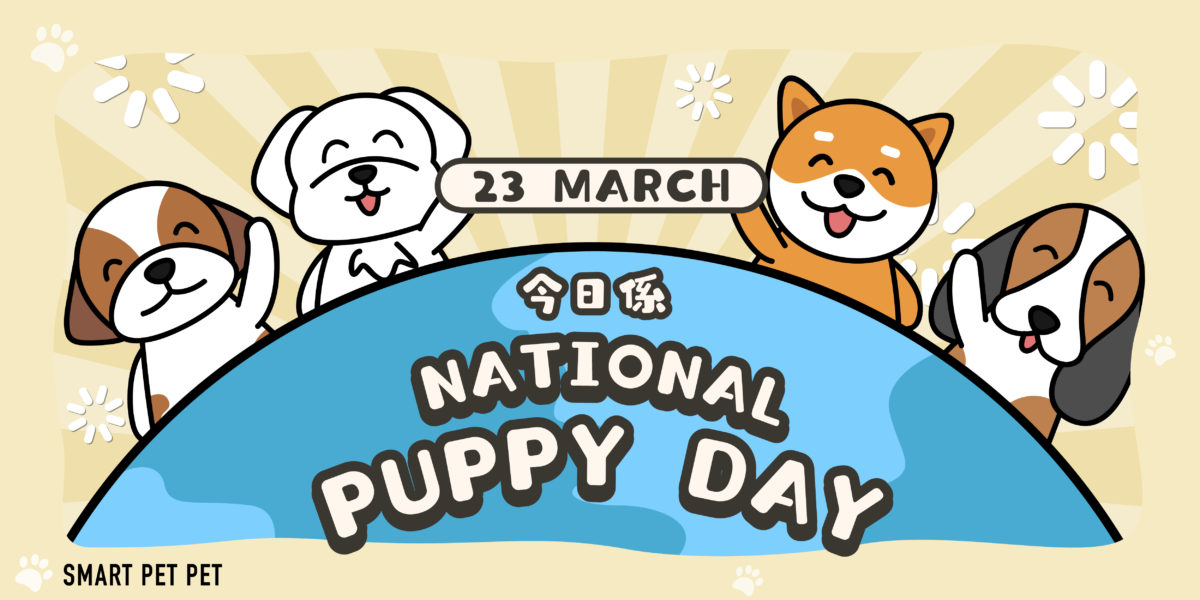 190 National Puppy Day-01