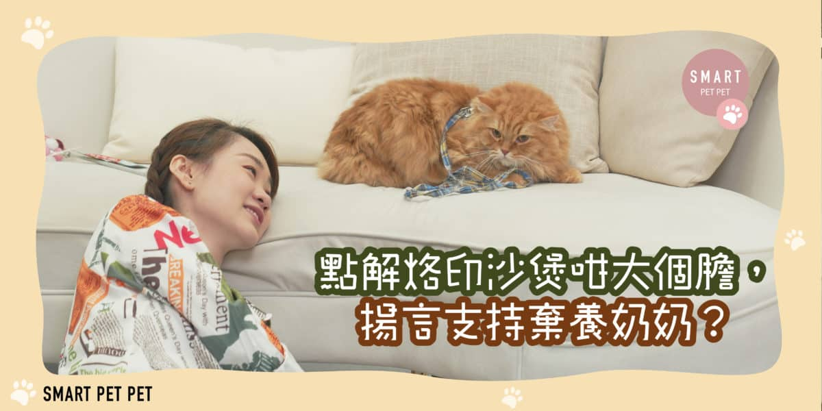 駱胤鳴 辛巴_feature