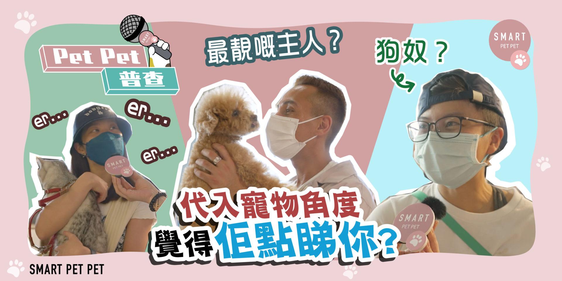 petpet普查-街訪-寵物角度_banner