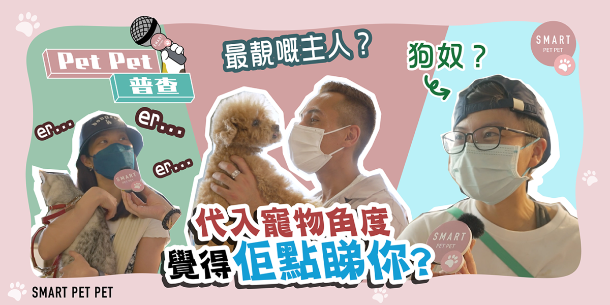 petpet普查-街訪-寵物角度_feature