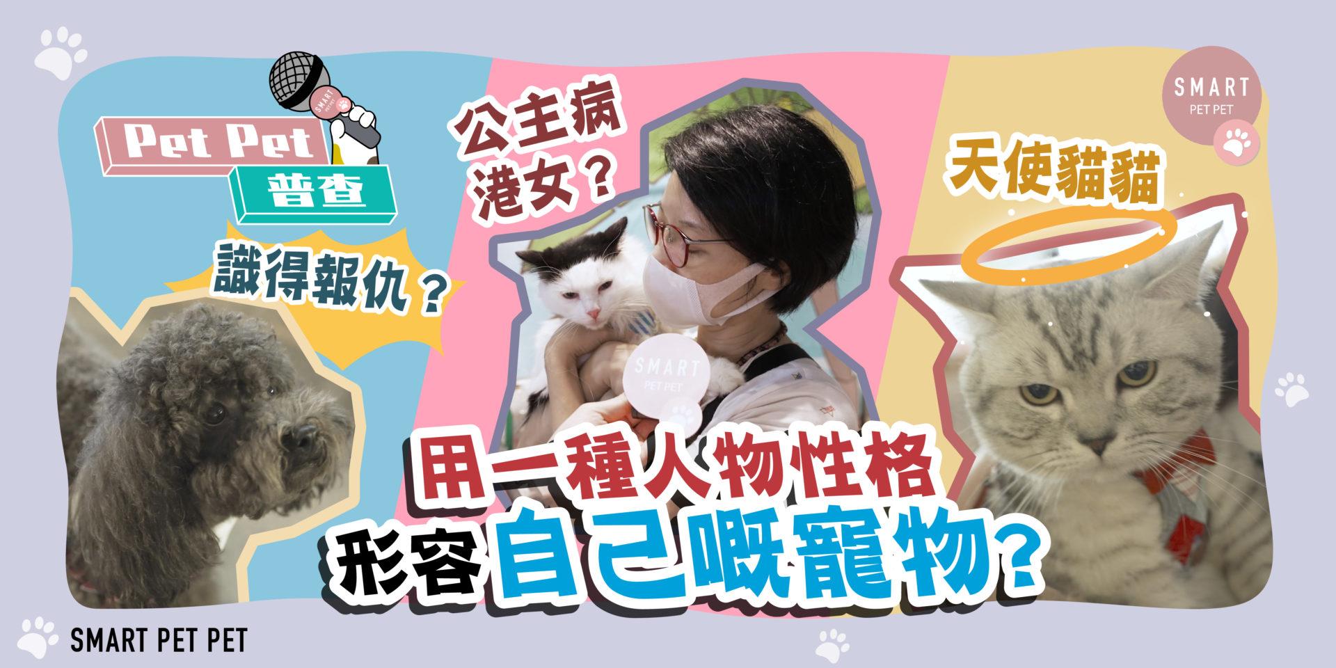 petpet普查_街訪_寵物性格_banner