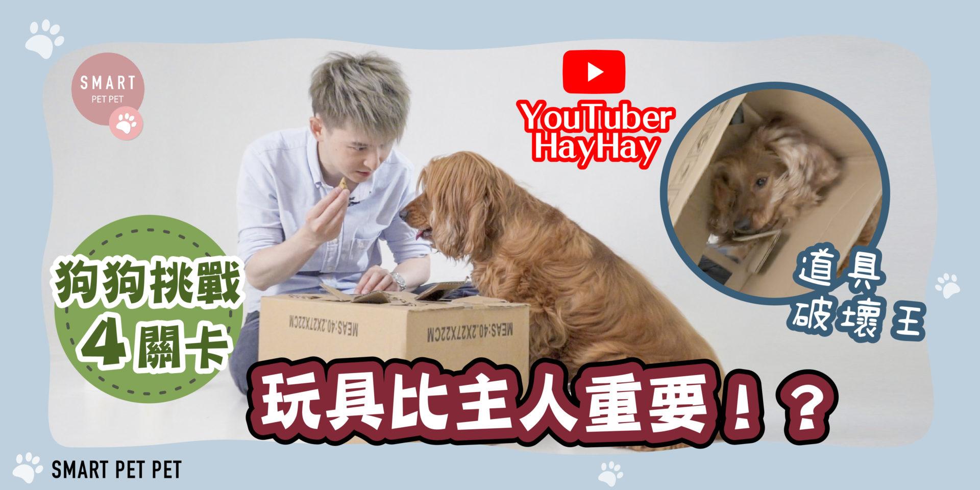 HayHay_狗_YouTuber_2_banner