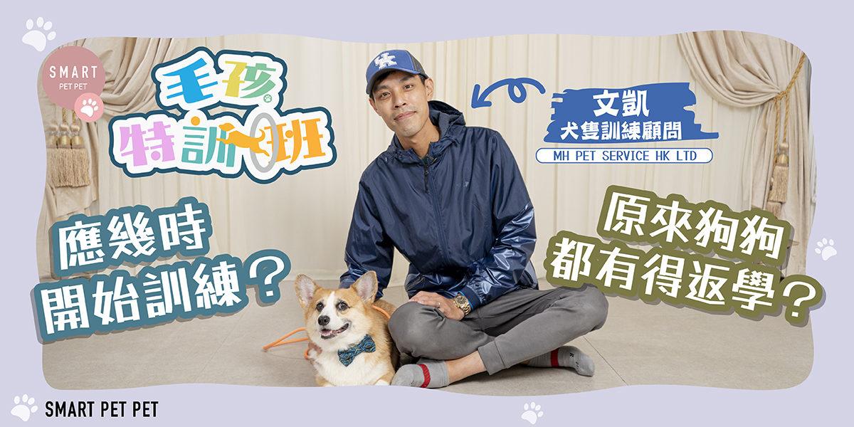 犬隻訓練_文凱_feature