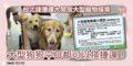 295 Metro Taipei news-01