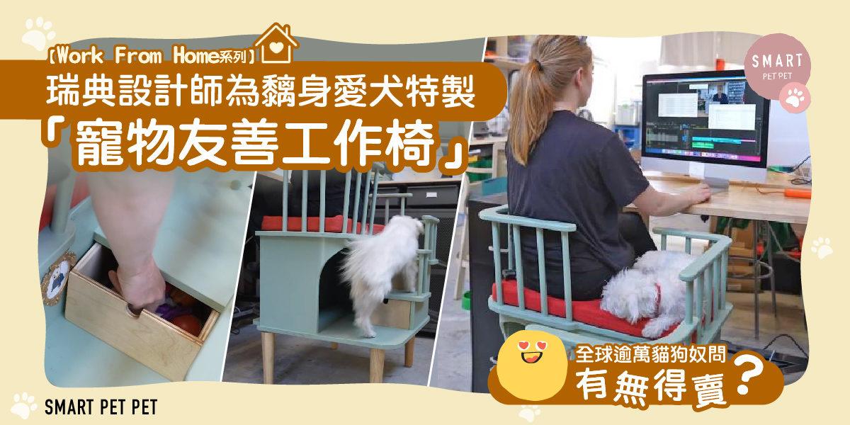 Pets Chair_web